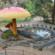 राणी बागेत डोरेमॉन, मिकी माऊस या कार्टून प्रतिकृतींसह आठ सेल्फ़ी पॉईंट्स; दिलीप वेंगसरकरांनीही केली स्तुती