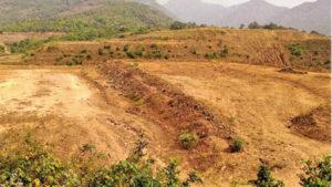 यवतमाळ जिल्ह्यात किटकनाशकांची विषबाधा मृत शेतकऱ्यांच्या कुटुंबियांना  दोन लाखाची मदत - मुख्यमंत्री; अतिरिक्त मुख्य सचिवांमार्फत चौकशीचे आदेश; शेतकऱ्यांना संरक्षक किटचे वाटप होणार