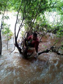 कन्या वन समृद्धी योजनेंतर्गत वृक्ष लागवडीसाठी शेतकऱ्यांना मदत
