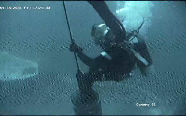 मंगळूरू जवळील समुद्रात 'आयएफबी रबाह'चे शोध आणि बचाव कार्य सुरु